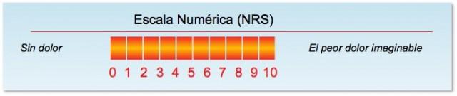escala-numerica1-640x135
