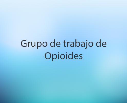 Grupo de Trabajo de Opioides